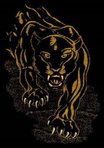 Black Panther  5x7