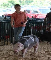 Will Derryberry Champion Spot 2015 TN State Fair