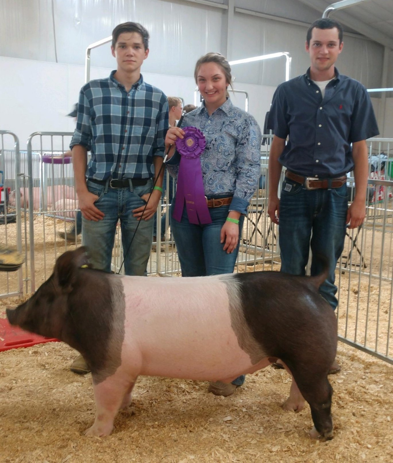 Matt Roach & Emily Woods 2019 Delta Fair & Music Festival Champion Heavy Weight Market Hog