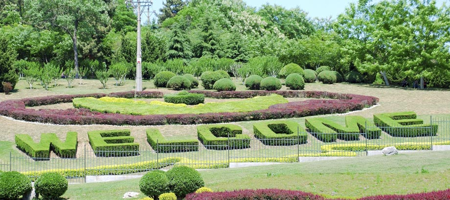 West Grove Landscape Co. Inc. in Garden Grove, CA specializes in ...