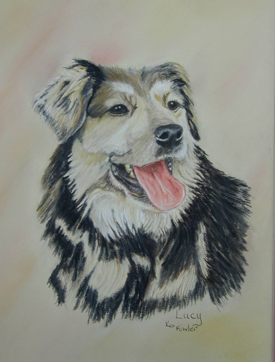 Lucy. ........ Pastel Pencils SOLD