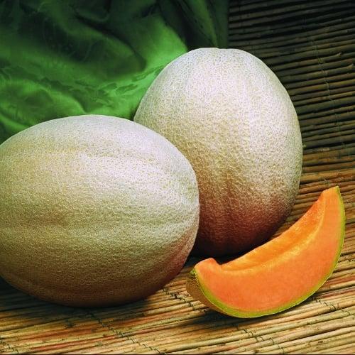 Melons Aphrodite