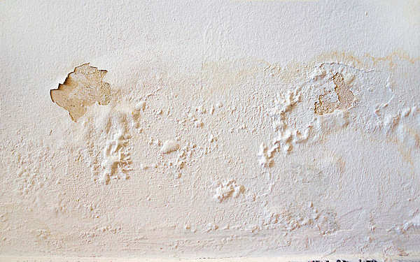 Wall water damage and potential mold