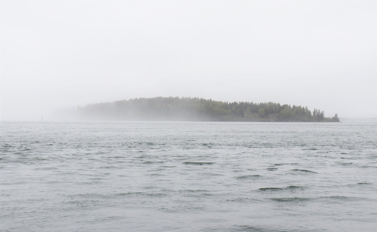 Maine island in the fog