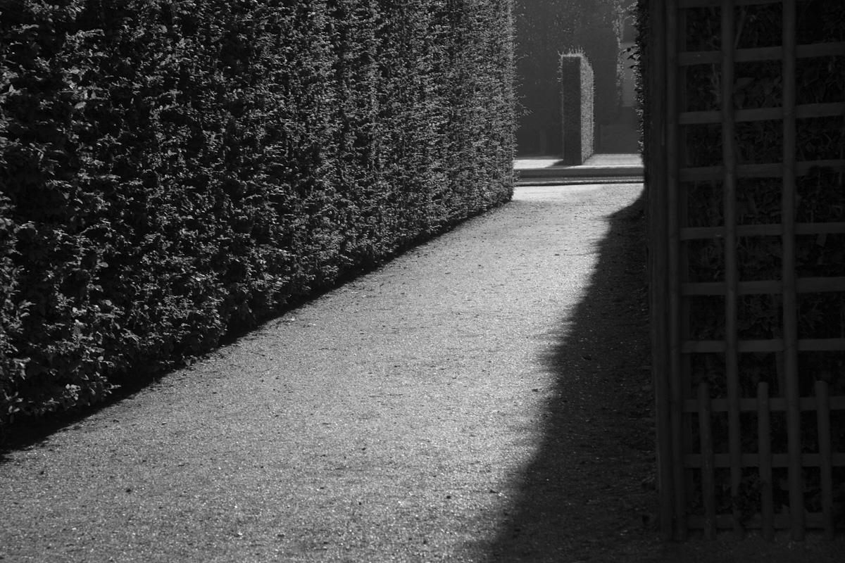 Versailles Garden Path