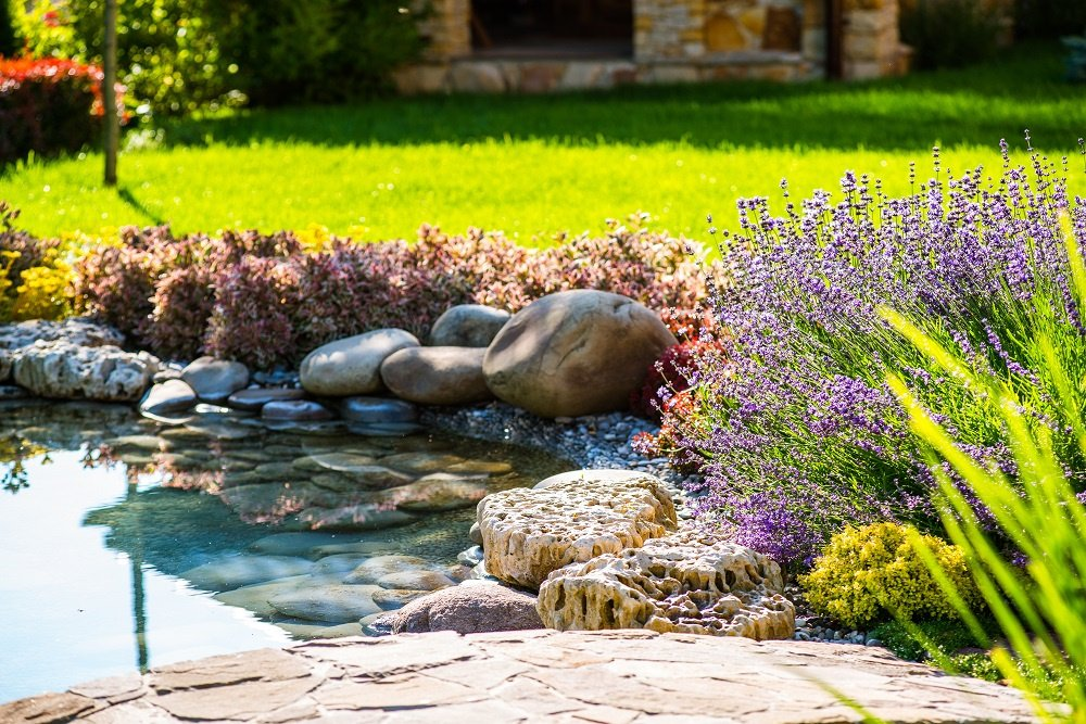 Water Garden Design in Johns Creek