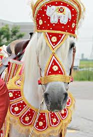 https://0201.nccdn.net/4_2/000/000/038/2d3/baraat-horse.jpg