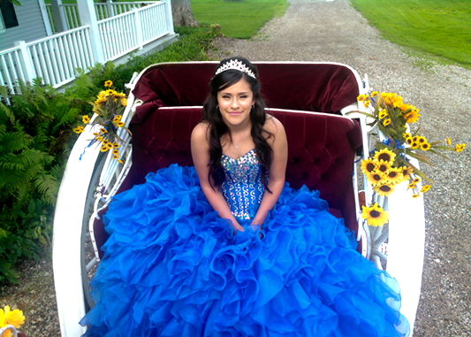 https://0201.nccdn.net/4_2/000/000/038/2d3/blue-dress-quinceanera.png