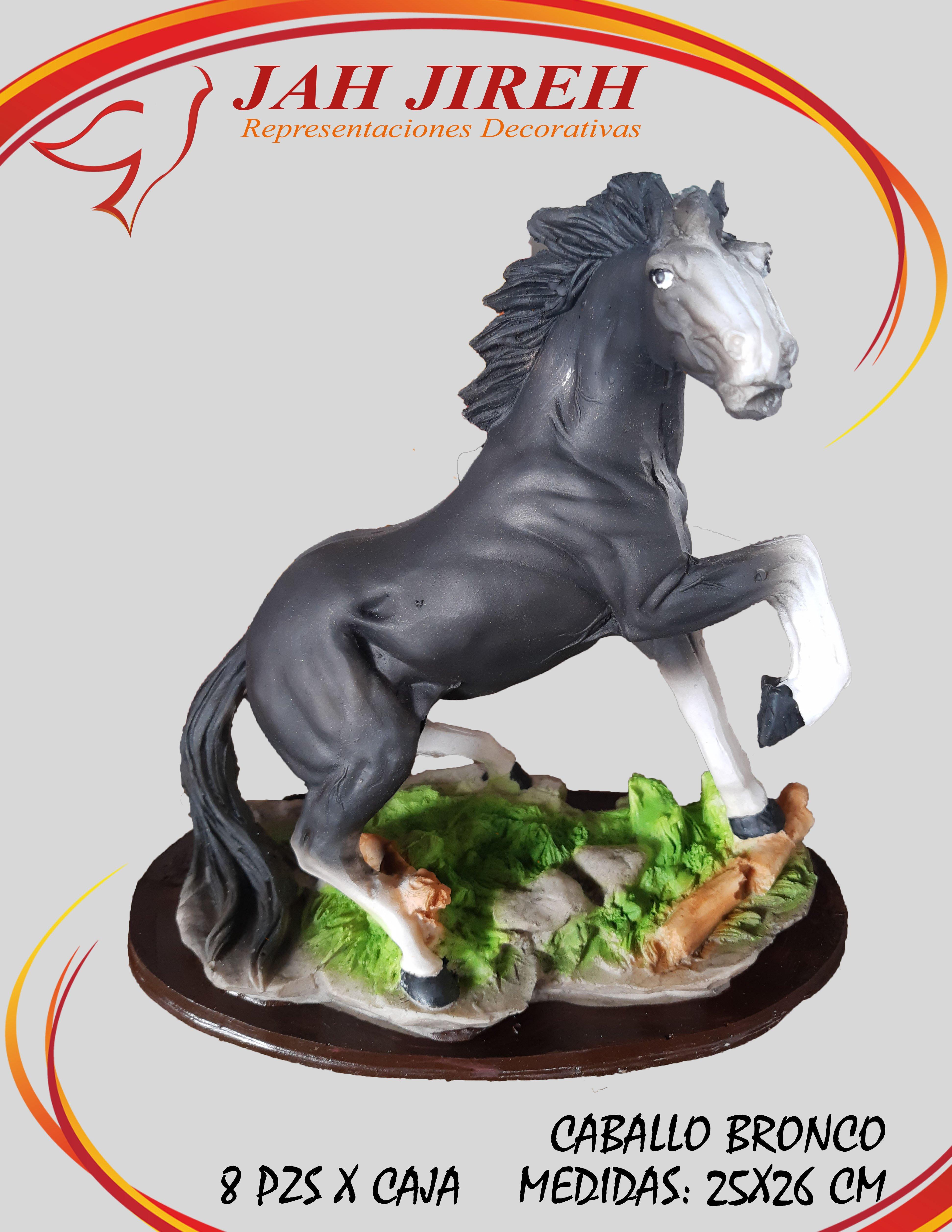 https://0201.nccdn.net/4_2/000/000/038/2d3/caballo-bronco.jpg