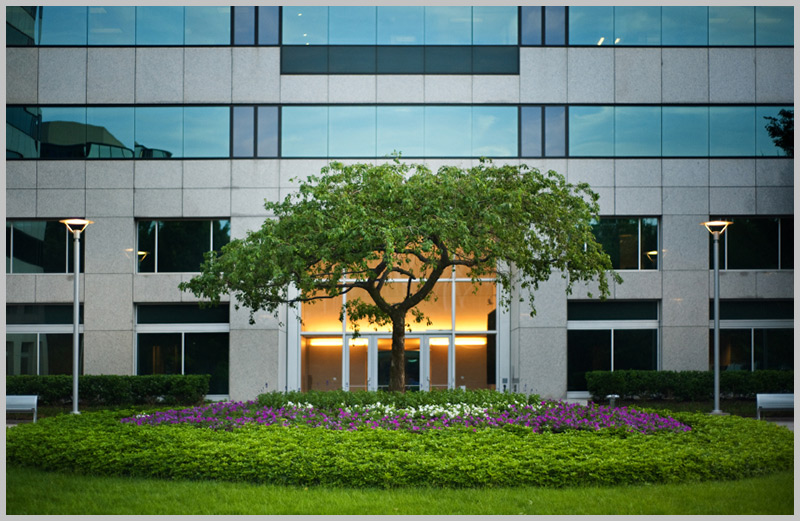 Office building with landscaping||||