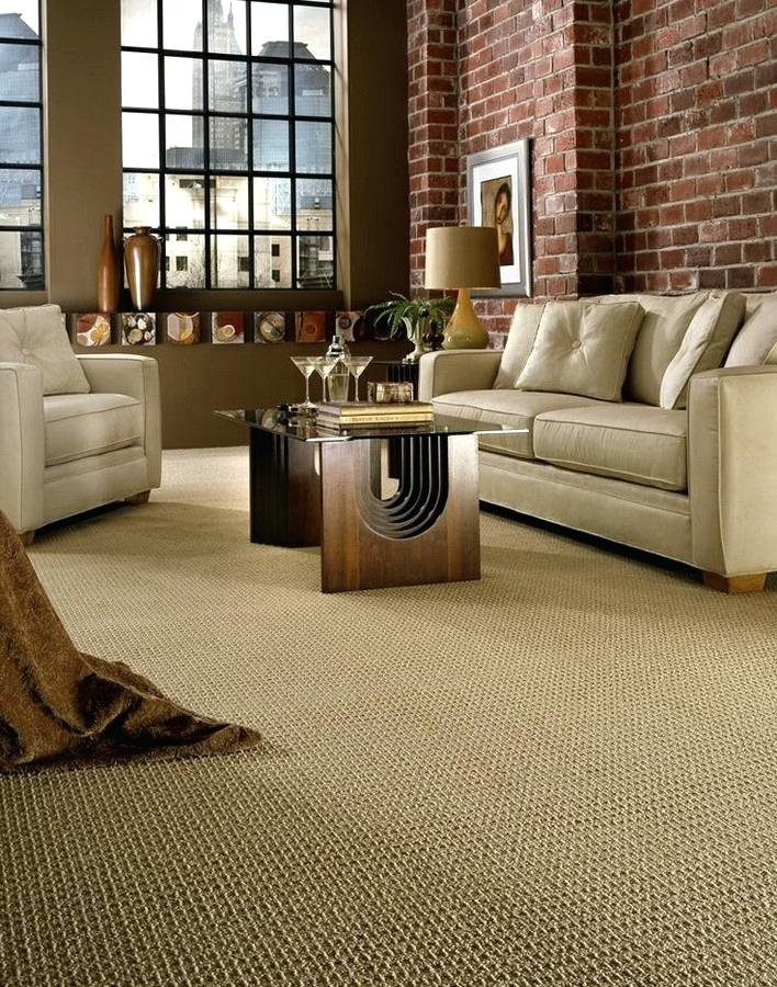 Belles Carpet Cleaning Carpet Cleaner Company Harrisburg Pa