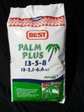 Palm Plus