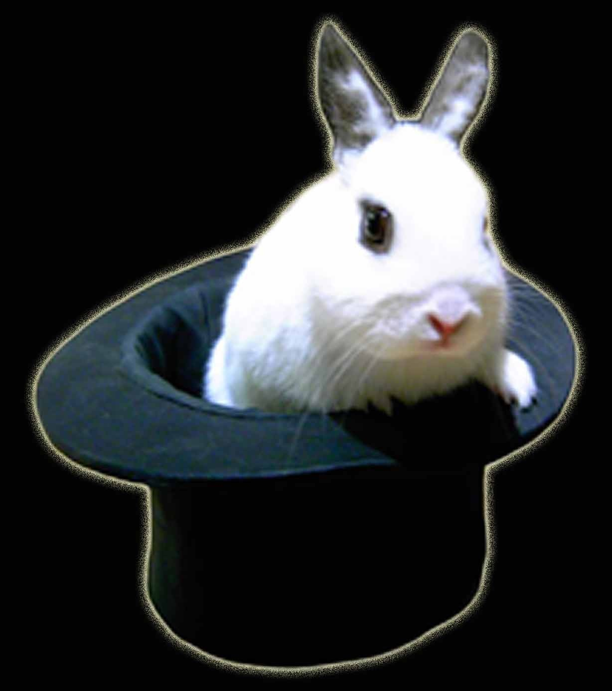 Rabbit in a Hat Magic Trick