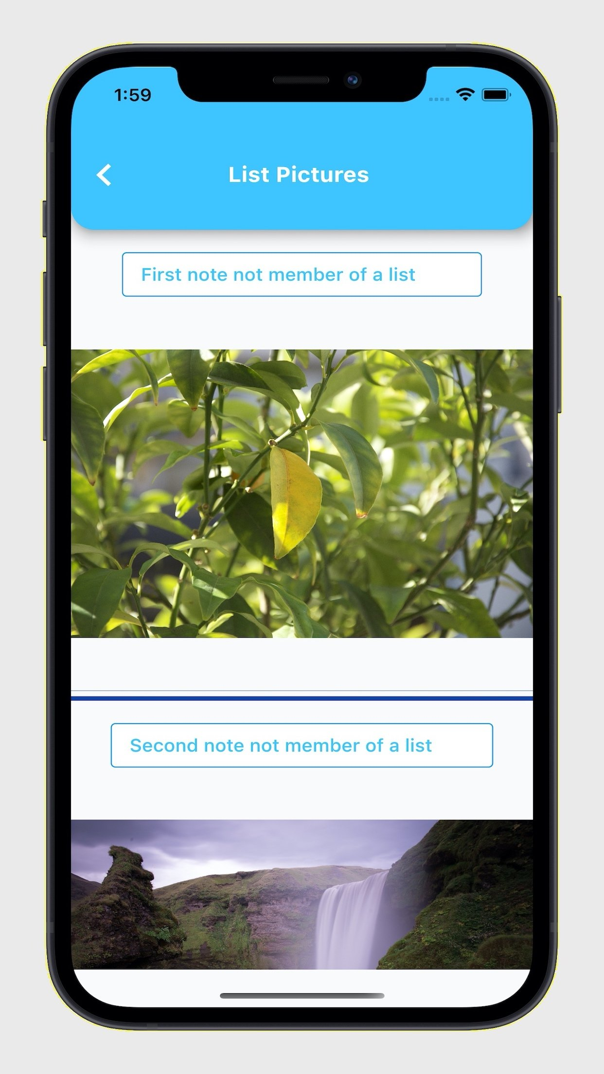 EasyList Pro Find Note by Picture search.