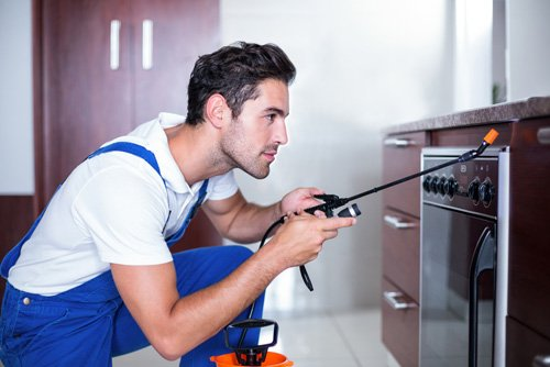 Man Spraying Insecticide on Oven