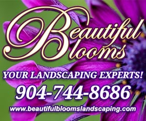 Beautiful Blooms | Your Landscaping Experts||||