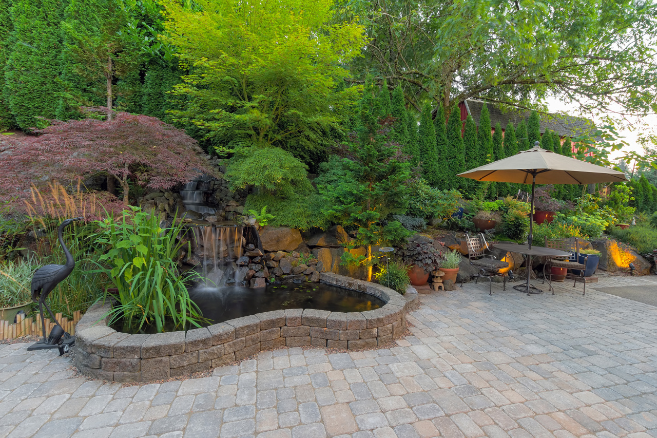 Backyard with Fountain