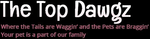 thetopdawgz.com