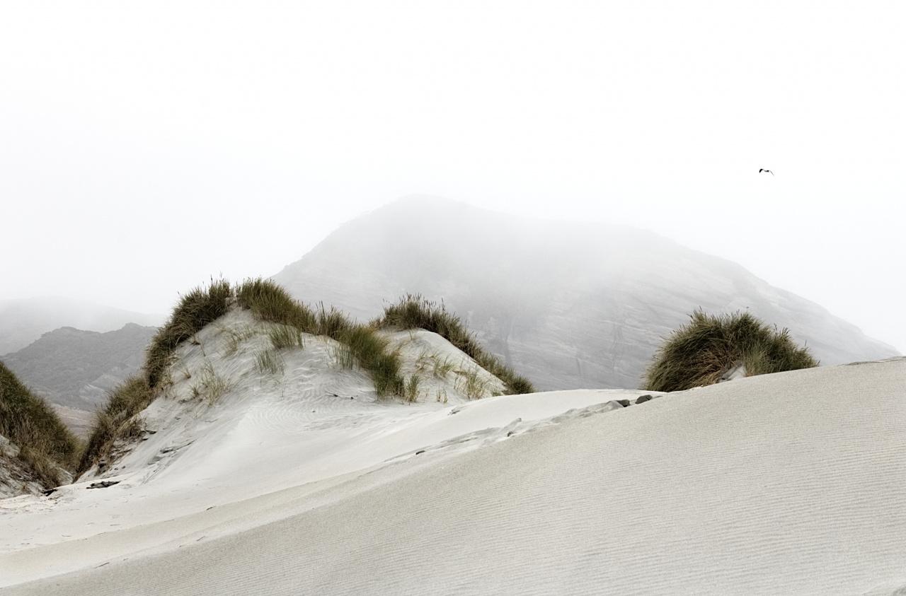 Sand dunes in New Zealand