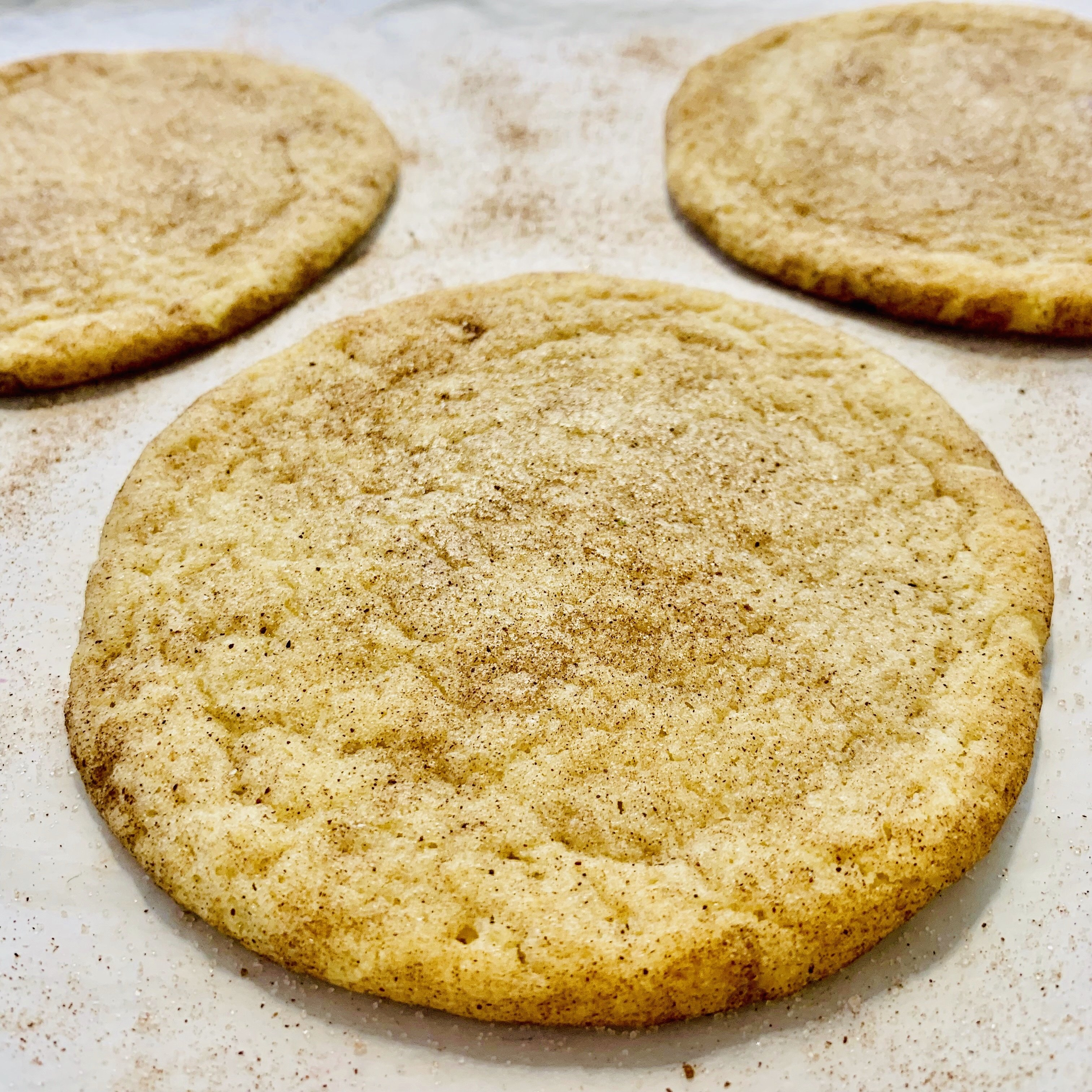 Cary Snickerdoodle