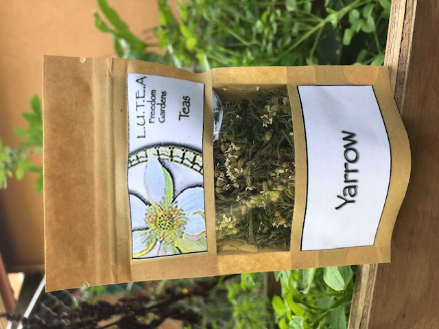 Yarrow herb/tea packet