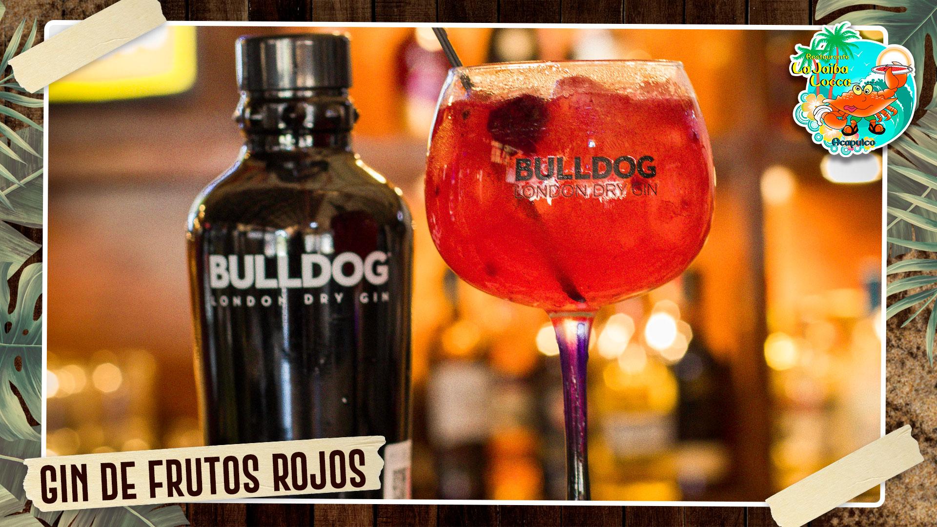 https://0201.nccdn.net/4_2/000/000/046/6ea/61.-gin-de-frutos-rojos.jpg