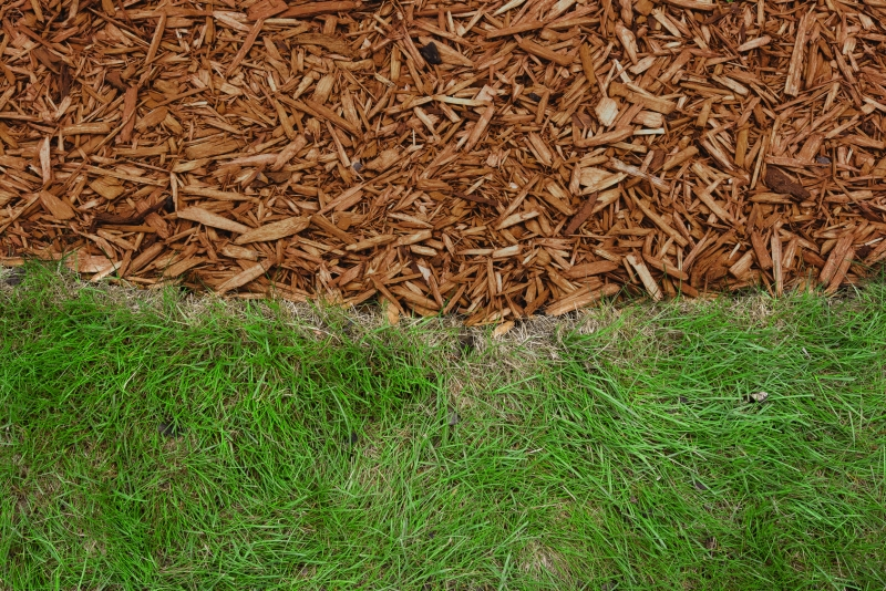 Brown mulch||||