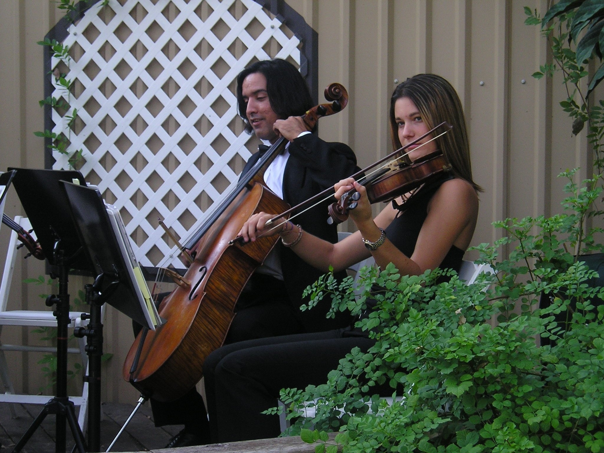 https://0201.nccdn.net/4_2/000/000/046/6ea/Cello---Viola-2048x1536.jpg