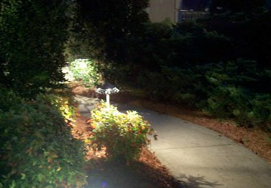 Lighted Walkway with Shrubbery||||