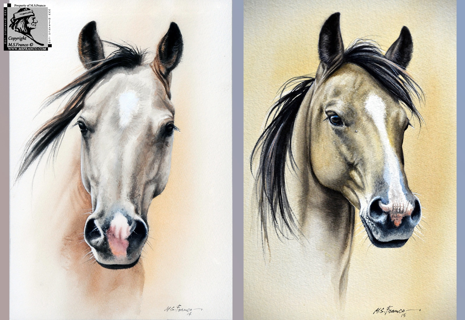 """Buckskin"" and  ""Buckskin II """