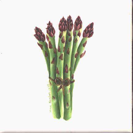 https://0201.nccdn.net/4_2/000/000/046/6ea/asparagus.jpg