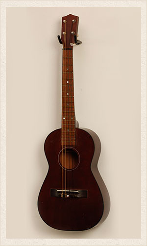 Dark Wood Acoustic Guitar