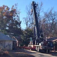 Crane Removals