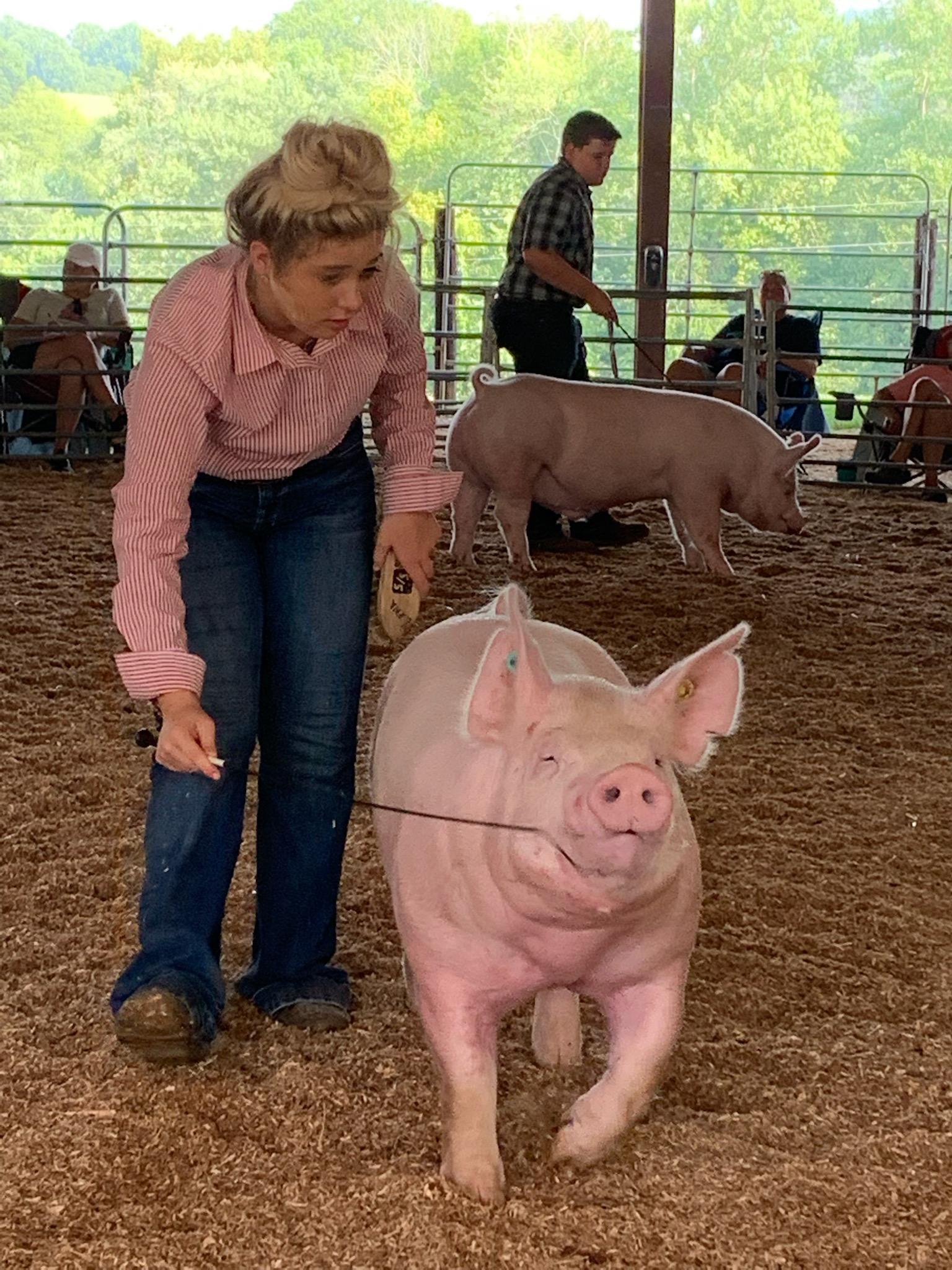 Lena Stricklen Smith County Swine Shootout Reserve Champion Yorkshire Barrow