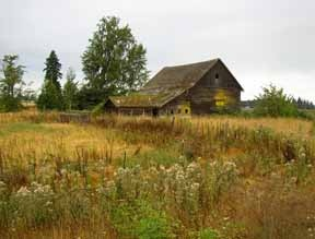Sequim, WA Farmstead