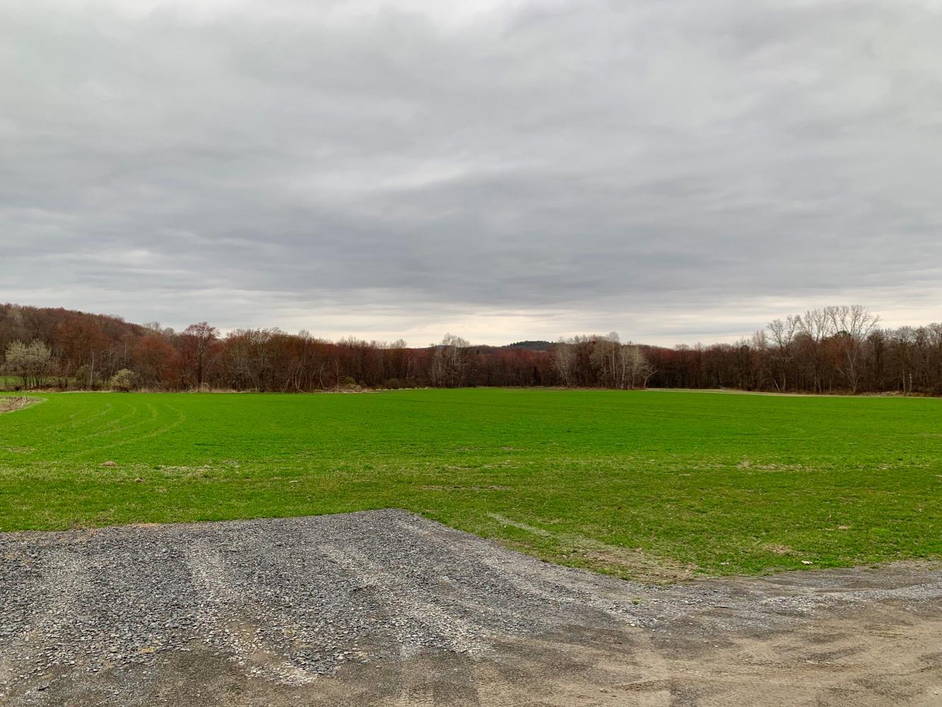 Hillrock Estate Distillery Fields