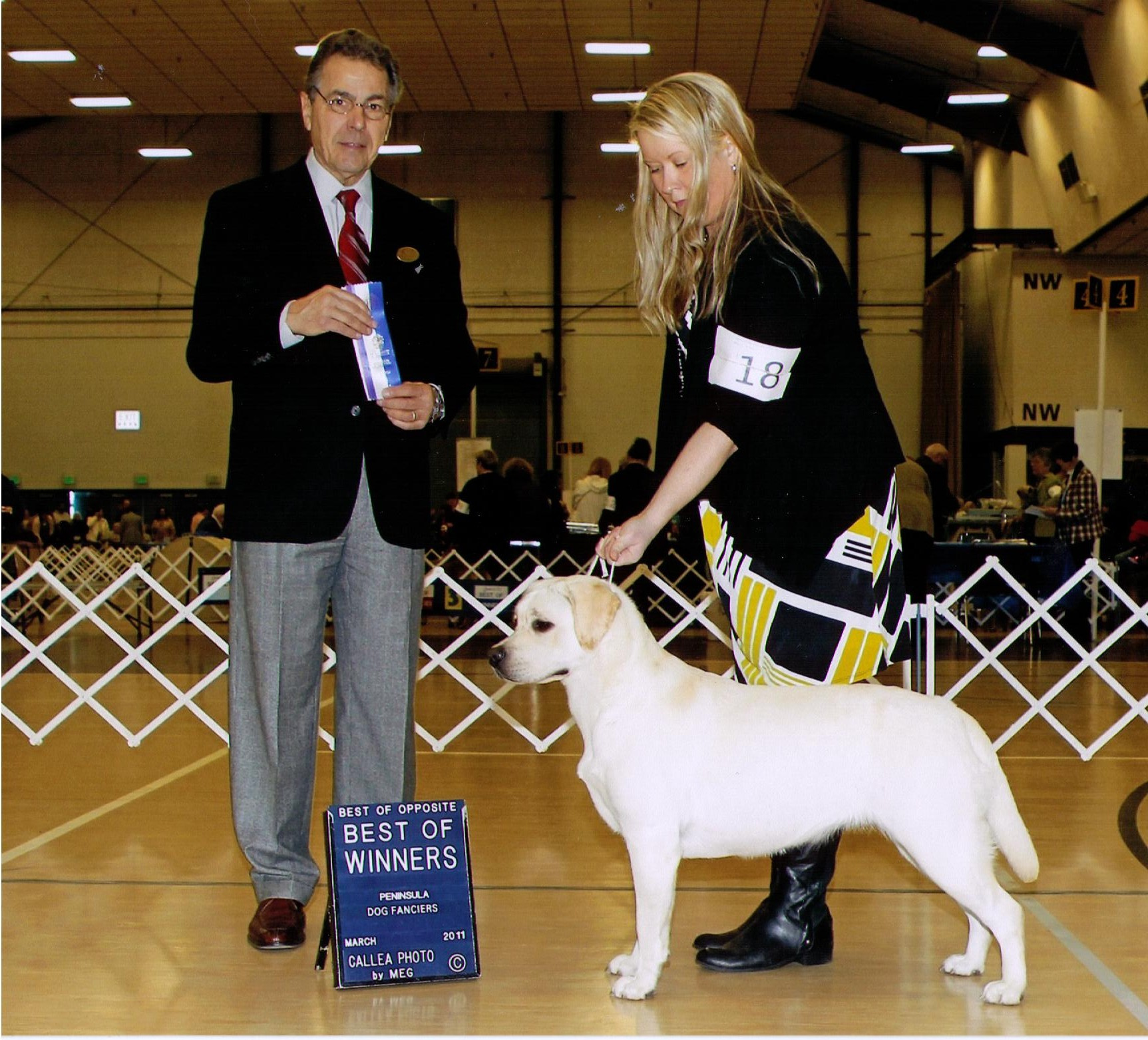 L'Una Best of Winners, Peninsula Dog Show 3/2011