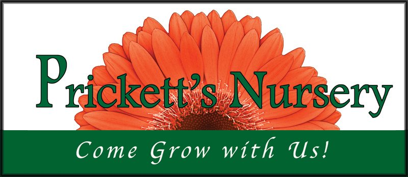 Prickett's Nursery