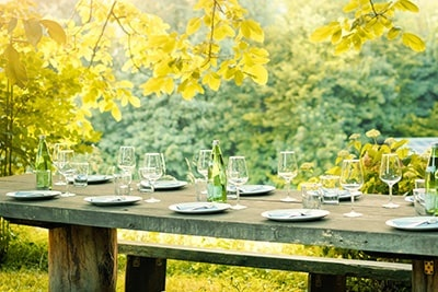 Dining In Countryside