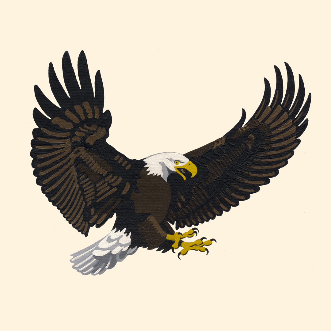 https://0201.nccdn.net/4_2/000/000/053/0e8/eagle-swoop-1-72.jpg