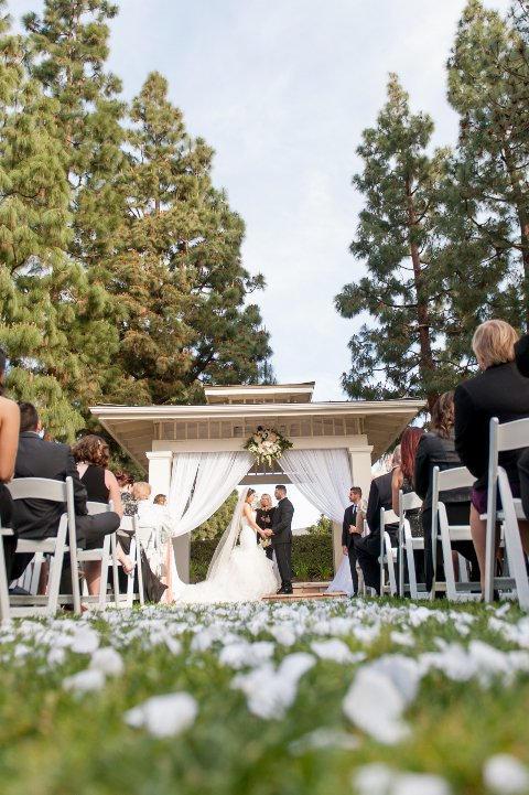 Gorgeous reception view