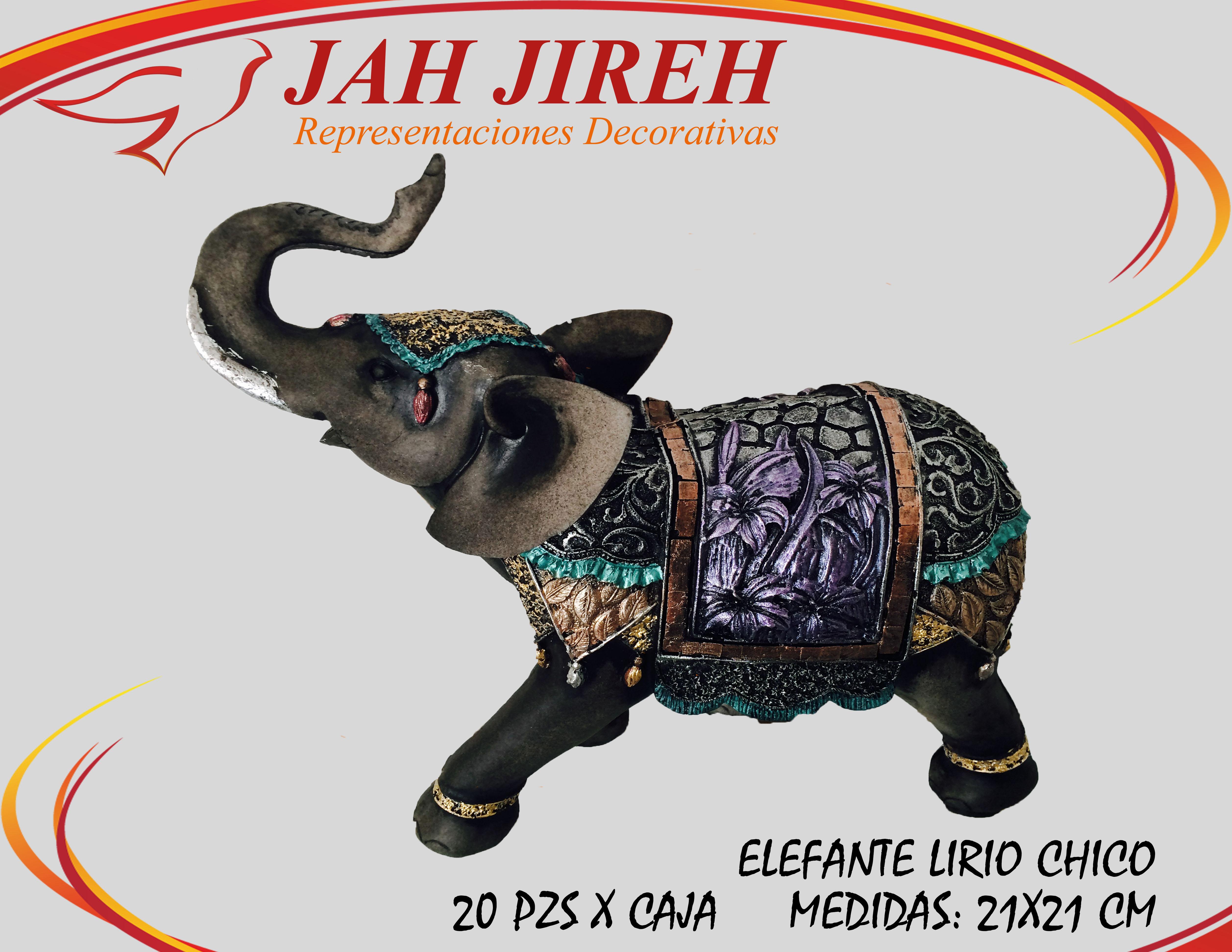 https://0201.nccdn.net/4_2/000/000/056/7dc/elefante-lirio-chico.jpg
