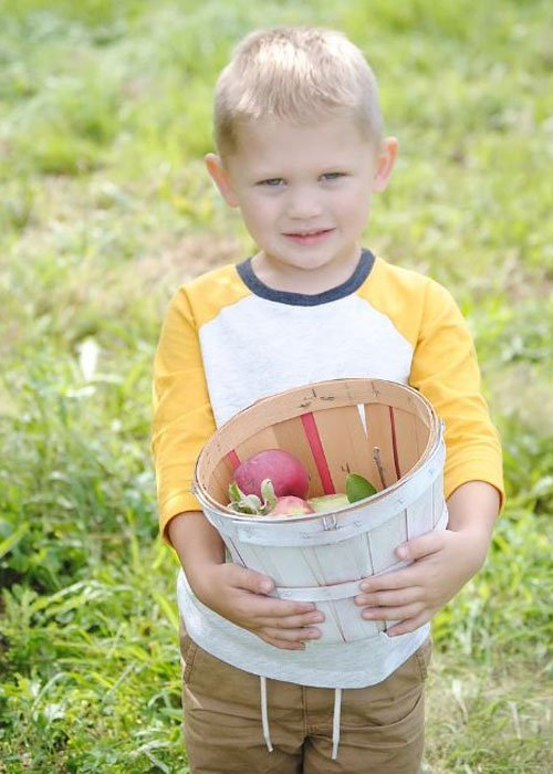 Boy With a Basket of Apples