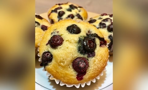 Carolina Blueberry Muffin