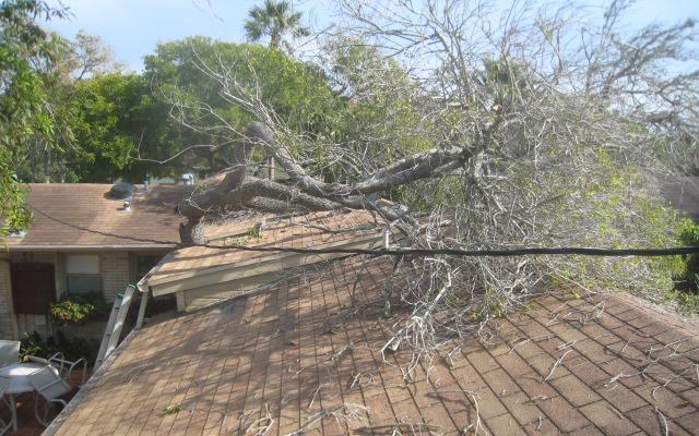 https://0201.nccdn.net/4_2/000/000/057/fca/Wind_Damage_-a.png