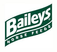 https://0201.nccdn.net/4_2/000/000/058/ad8/Baileys.jpg