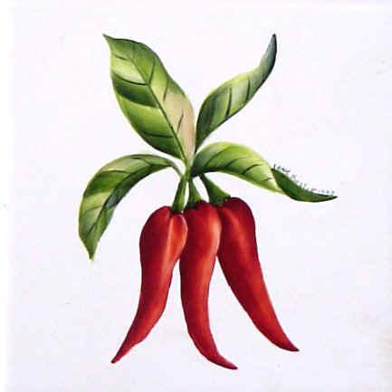 https://0201.nccdn.net/4_2/000/000/05c/240/chili_peppers.jpg