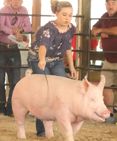 Lena Stricklen 2018 Phelps County Fair, Missouri Grand Champion Overall Grand Champion On Foot Grand Champion Carcass