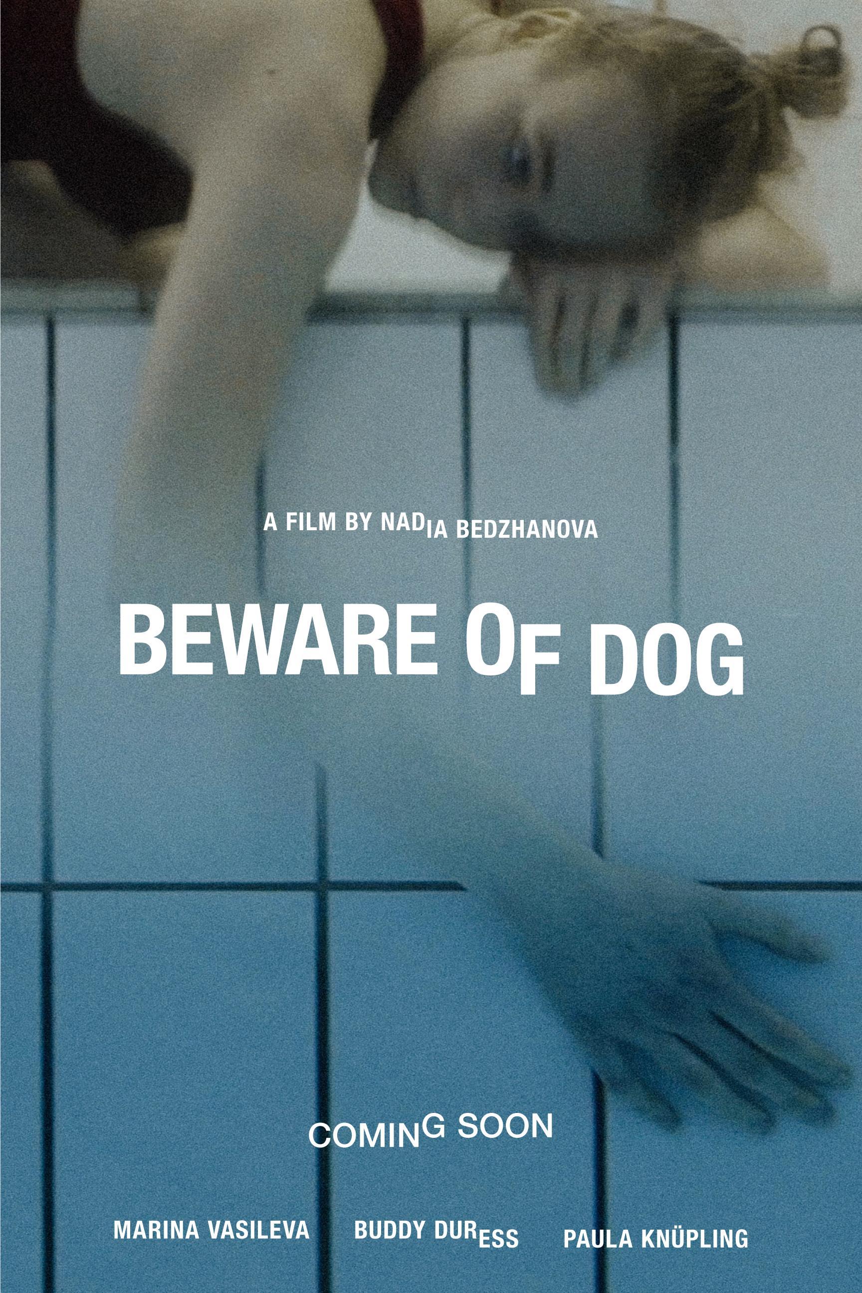 https://0201.nccdn.net/4_2/000/000/05c/c64/bewareofdog.jpg