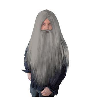 https://0201.nccdn.net/4_2/000/000/060/85f/0024042_peluca-mago-gris-con-barba-larga_345-345x344.jpg